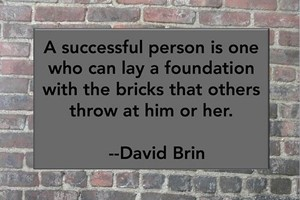 DAVID BRIN: A successful person is one who can lay a foundation with the bricks that others throw at him or her.