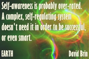 DAVID BRIN: Self-awareness is probably over-rated. A complex, self-regulating system doesn't need it in order to be successful, or even smart.